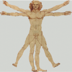PP 347 : Le corps en référence : de la conscience à la représentation